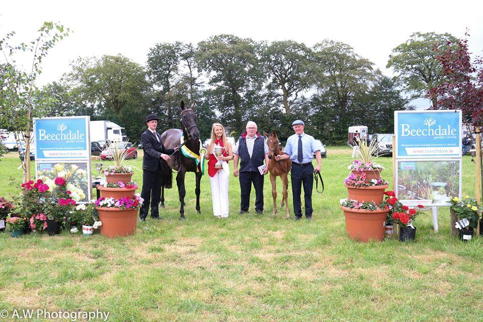 Beechdale-winners